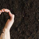 Il compost prodotto dall'impianto di Prato Sardo distribuito gratis