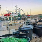 Protocolli anti Covid non rispettati, multato un noleggio barche di Dorgali