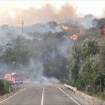 Intesa San Paolo e Coldiretti in aiuto delle aziende colpite dagli incendi in Sardegna